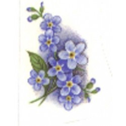 FORGET ME NOT 30x20mm BLUE (33)
