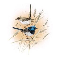 Glass Firing Blue Wren 150mm 2 birds (1)