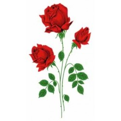 GLASS RED ROSE 125X75MM (10)