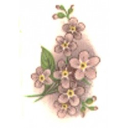PINK FORGET ME NOT 30X20MM