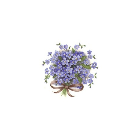 FORGET ME NOT 50x50mm BLUE (4)