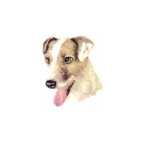 Jack Russell 40mm NB