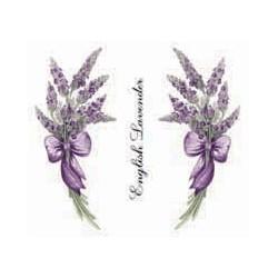 Lavender 50mm (70)
