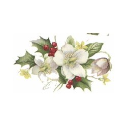 ** SALE 50% OFF CHRISTMAS ROSE 88X50MM (21)