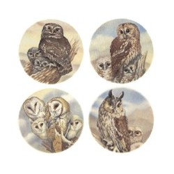 OWLS (SET OF 4) 2.OWL 50