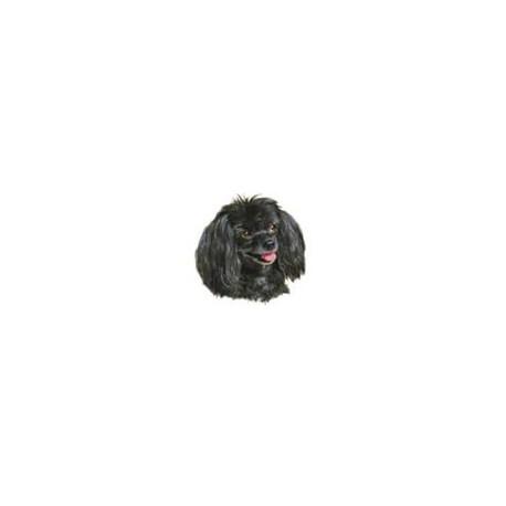 Poodle Black (40mm)