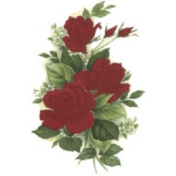 RED ROSES 105X78MM (6) 2.ROSE 3 RED