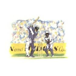 Sports Series Cricket 75mm