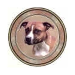 Staff Bull Terrier Brown 75mm with Border