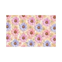 Sussex Daisy Chintz