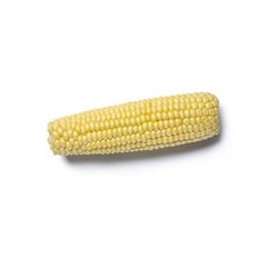 Sweetcorn 57mm