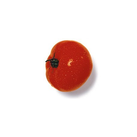 Tomato 28mm