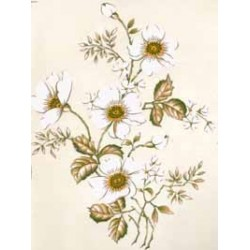 *** SALE 50% OFF *** WHITE PETAL 190X142MM (4)