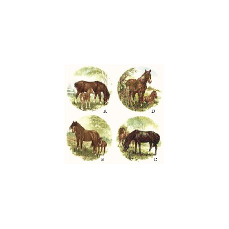 Horse & Foal 60mm set of 4