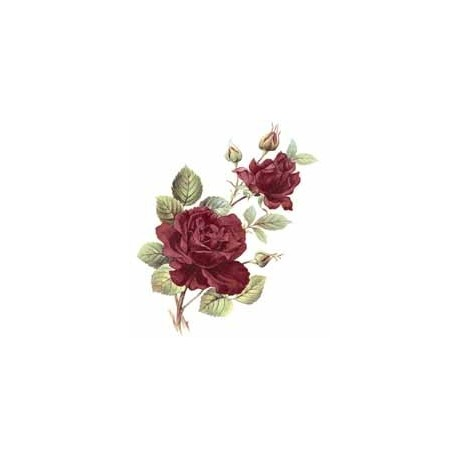 Anniversary Ruby Rose 30x20mm (55)