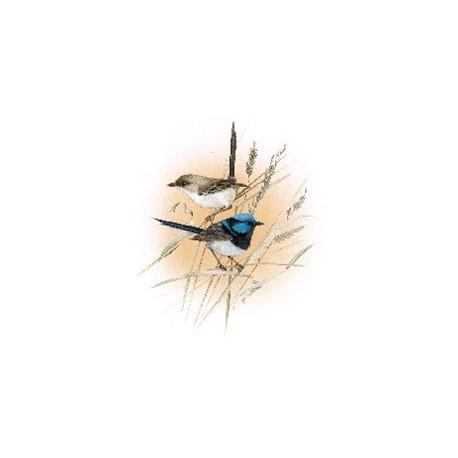 BLUE WREN 150MM (2)