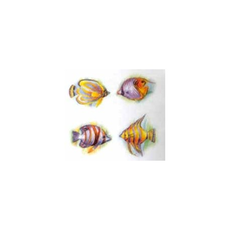 Cariibian Fish 35 x 25mm (80)