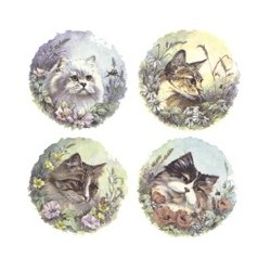 CATS (SET OF 4) 11048-190