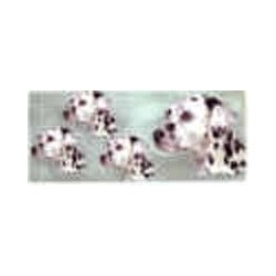 Dog Mugwrap Dalmation